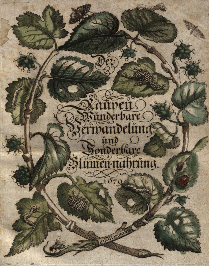 Eerste Volume van tekeningen op koper
